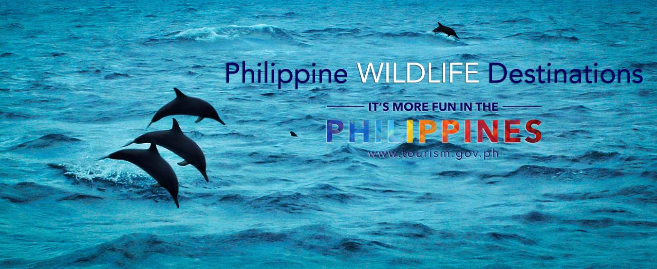 site de rencontre aux philippines